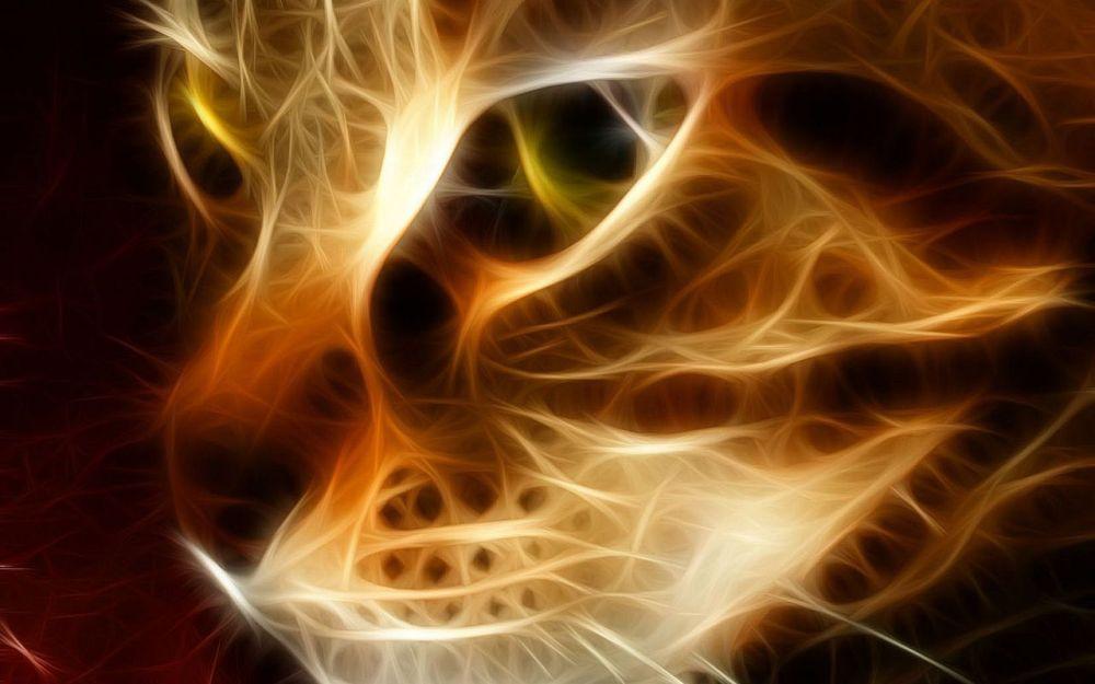 Heisenberg's Cats (1/2)