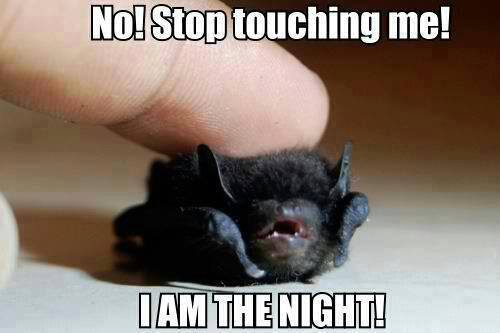 I am the night...