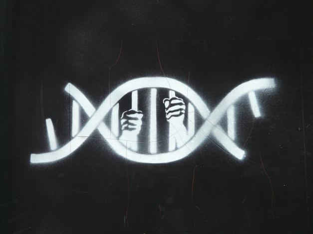 genetic_prison_by_guiz_intellectual_sick_art_high_desktop_3264x2448_hd-wallpaper-1239238 (1)
