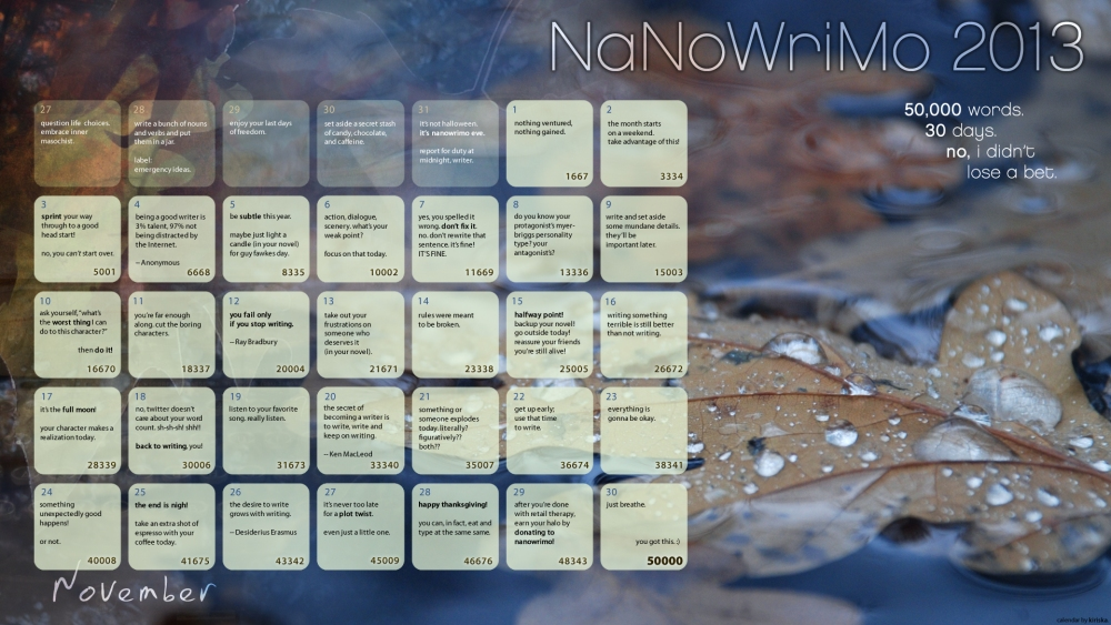 So you want to do NaNoWriMo in 2013?